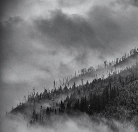 5 причин, почему плохая погода отлично подходит для фотосъёмки