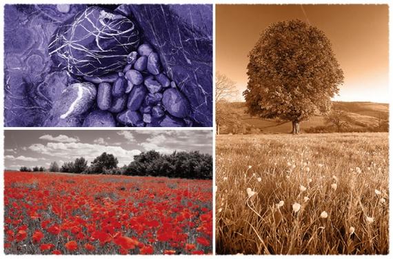 10 лучших режимов наложения для фотографов (и как их использовать)